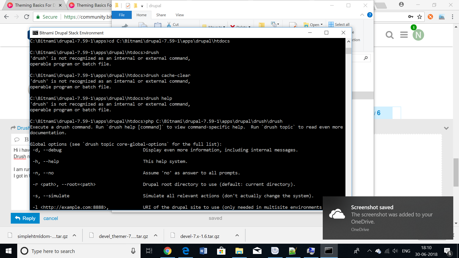 Drush not recognized on local windows bitnami install